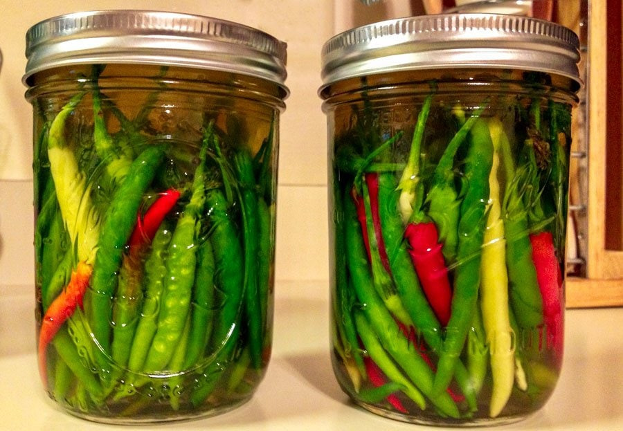 hot peppers in vinegar-