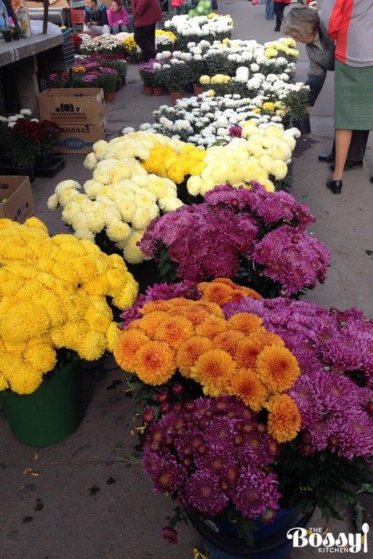 farmers-markets-in-romania5