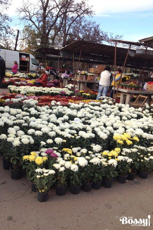 farmers-markets-in-romania8
