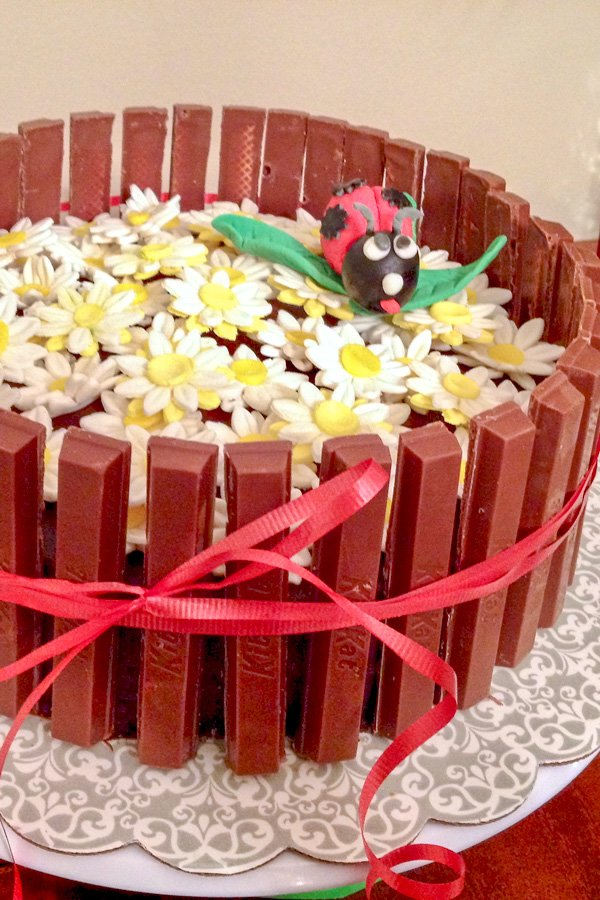 candied orange salted chocolate ganache yellow cake decorated with ladybugs and daisies