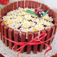 Candied Orange Salted Chocolate Ganache Yellow Cake