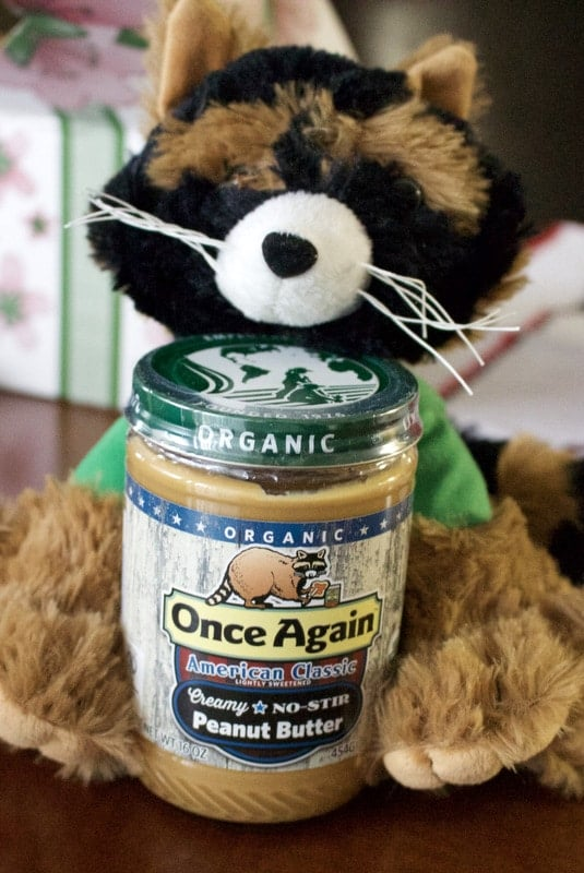 stuffed animal raccoon with jar of peanut butter