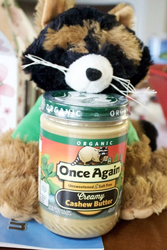 stuffed animal raccoon with jar of cashew butter