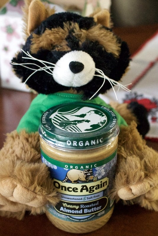 stuffed animal raccoon with jar of almond butter