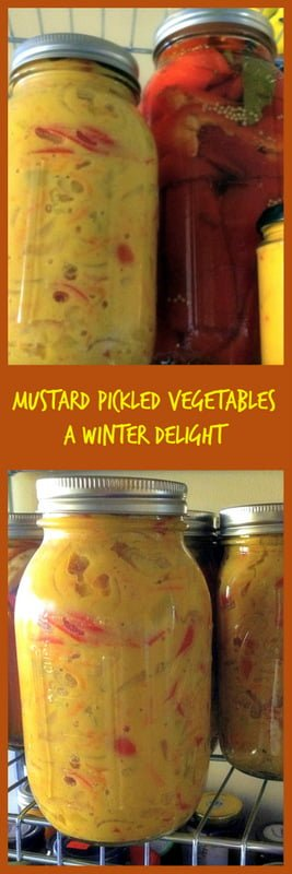 Mustard Pickled Vegetables- a winter delight- great for the holidays, perfect as an appetizer, side dish with roasted meats or just as a snack.