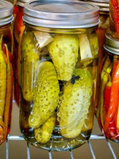Pickled Cucumbers In Vinegar Easy Recipe 1