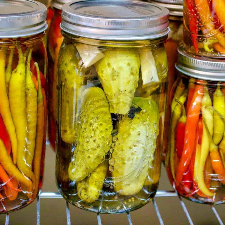 Pickled Cucumbers In Vinegar- Easy Recipe