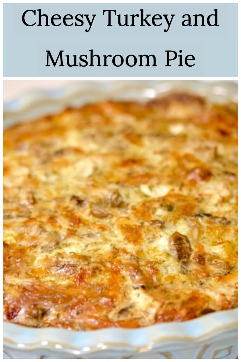 Cheesy Turkey and Mushroom Pie- close up- featured picture