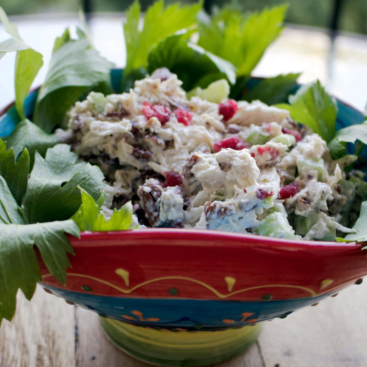 Delicious and easy recipe for a great lunch, dinner or party. Cranberries Pecans Chicken Salad is a great addition to your recipe collection.Cranberries Pecans Chicken Salad