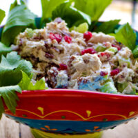 Cranberry Pecan Chicken Salad Featured picture0