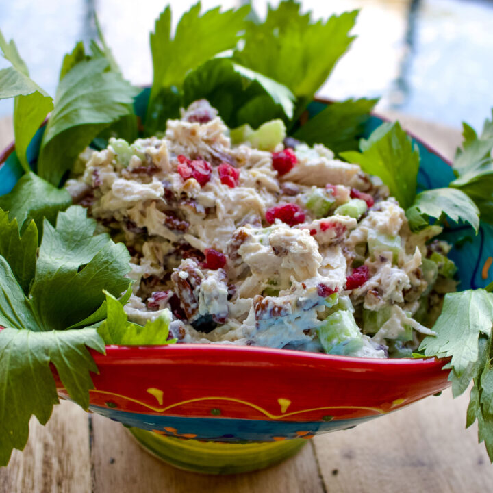 Cranberry Pecan Chicken Salad Squared picture0