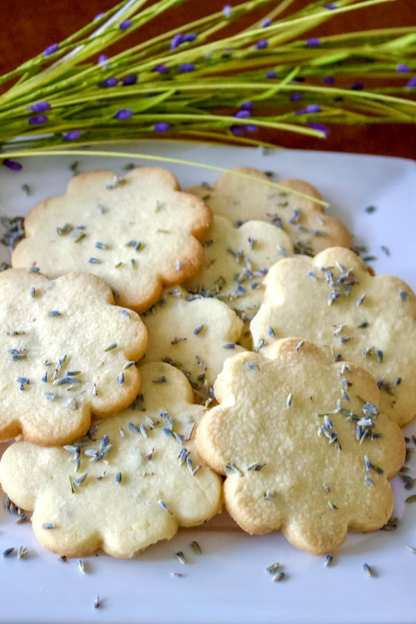 Lemon Lavender Butter Cookies on a white plate sprinkled with lavender