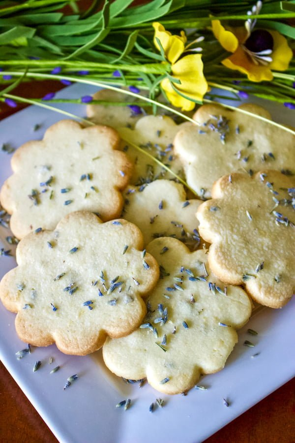 These Lemon Lavender Butter Cookies could make a great gift for family and friends! Bake them in the winter and they will bring summer closer to you. The cookies are also perfect on a Sunday afternoon, munching on them in the garden next to a delicious tea, but how perfect they could be for a bridal or baby shower?