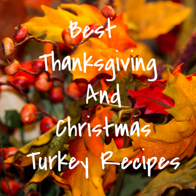 Best Thanksgiving And Christmas Turkey Recipes