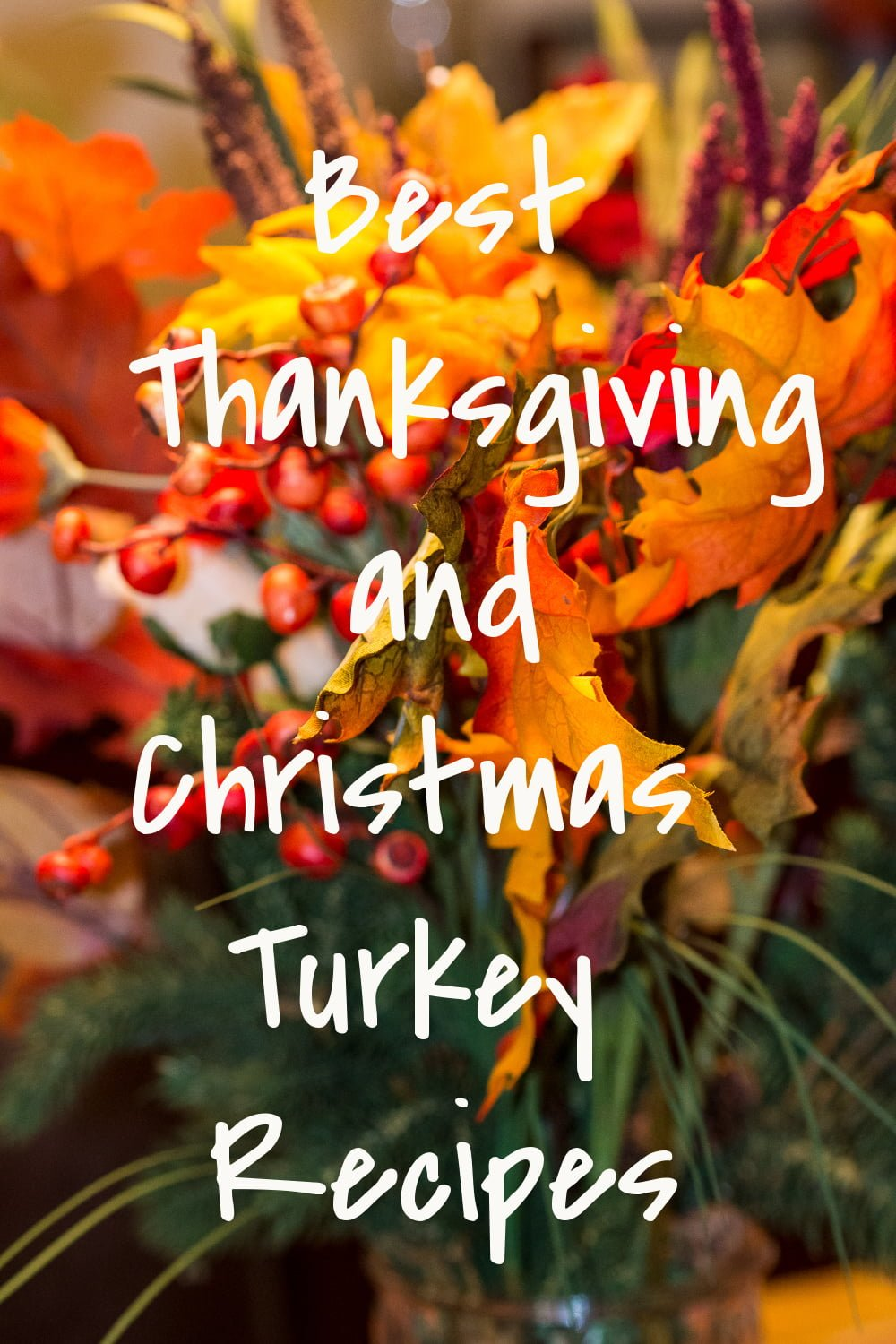 Best Thanksgiving And Christmas Turkey Recipes2