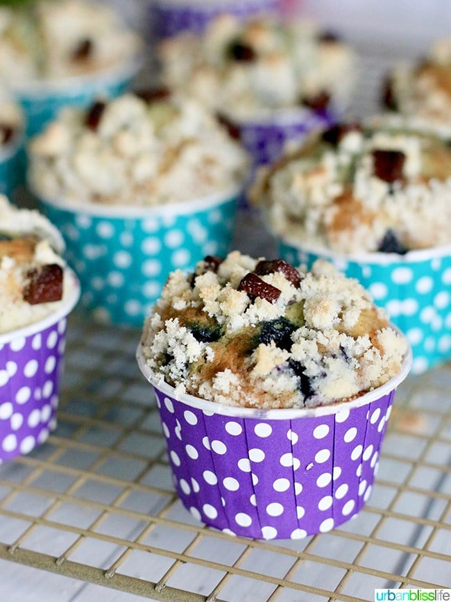 Double Berry Chocolate Chip Muffins - Urban Bliss Life