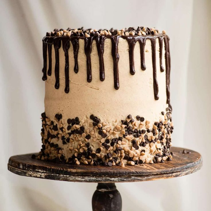 Cinnamon Chocolate Chip Cake with Brown Sugar Cream Cheese Frosting