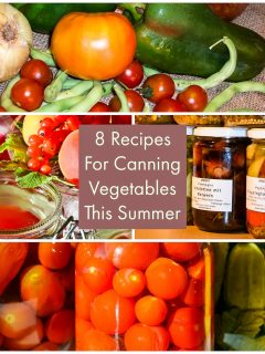 8 Recipes For Canning Vegetables This Summer1 1