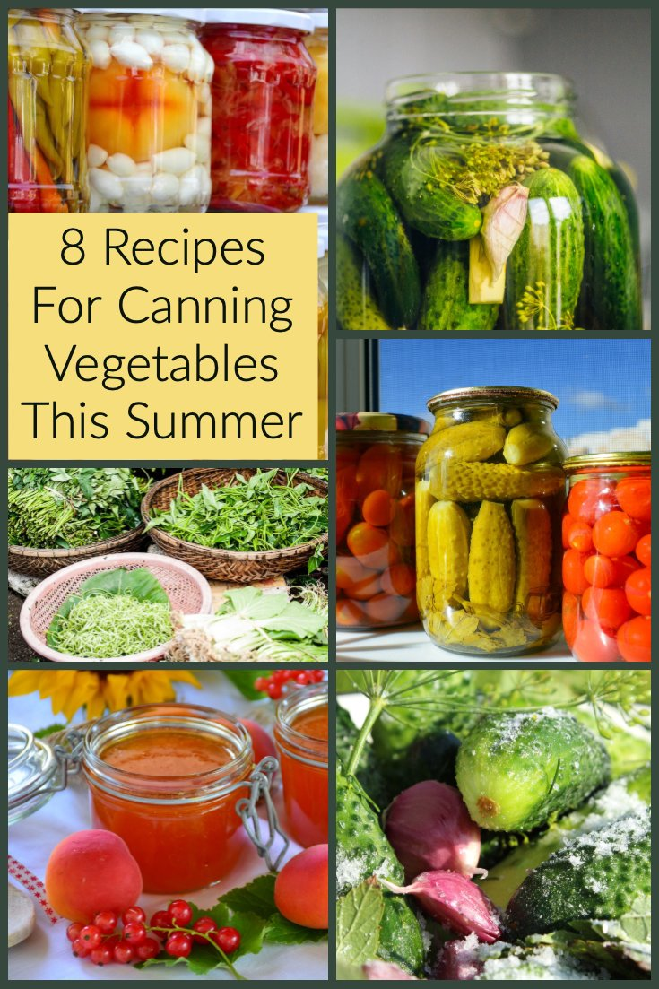 8 Recipes For Canning Vegetables This Summer- Pinterest picture