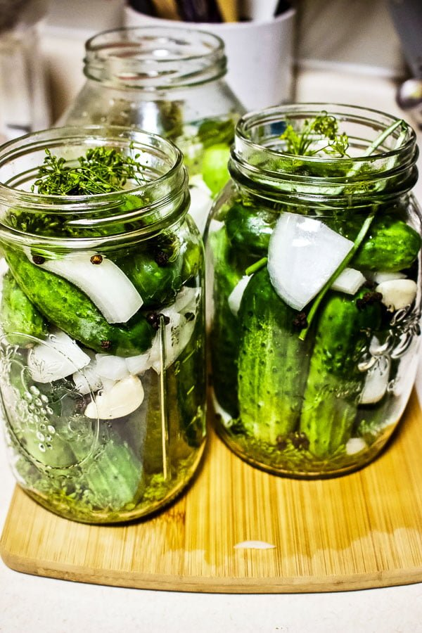 Summer Lacto Fermented Kosher Pickled Cucumbers77