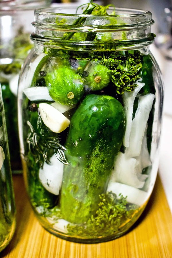 Summer Lacto Fermented Kosher Pickled Cucumbers88