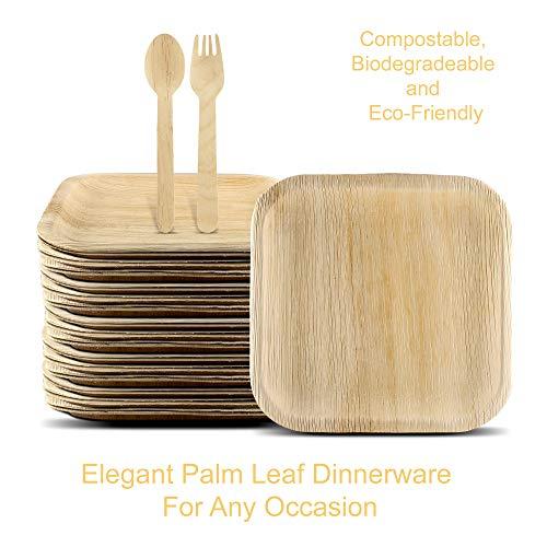 Disposable, Compostable & Biodegradable Palm Leaf Plates 75 Piece Set