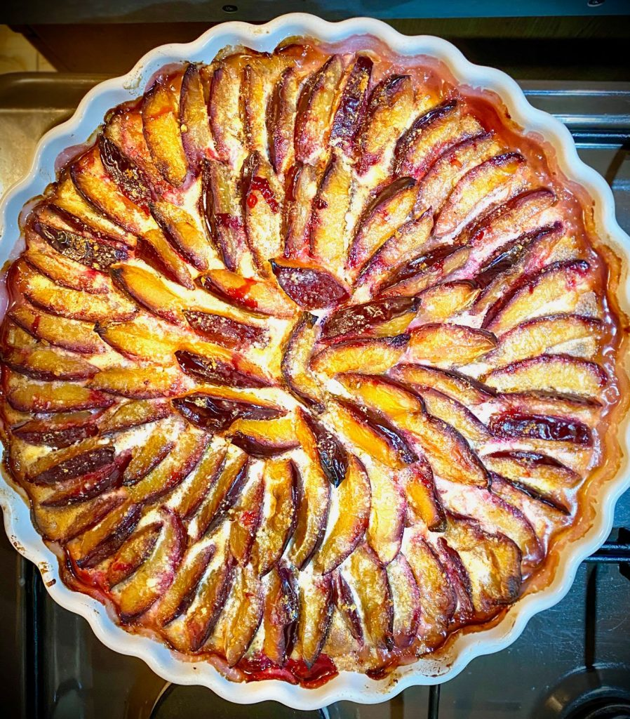 Plum tart baked- square picture of the tart